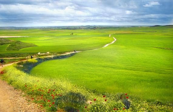 Tramo verde del Camino de Santiago