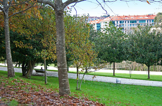 Imagen del parque del Paxonal, en Ponte Pedriña