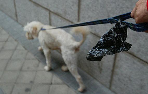 Dueño responsable con una bolsa para recoger lo que ensucie su perro